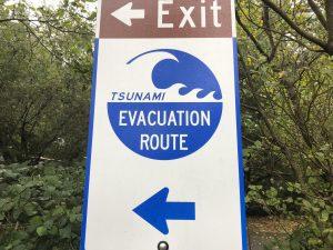 Tsunami anyone? - Living on road time